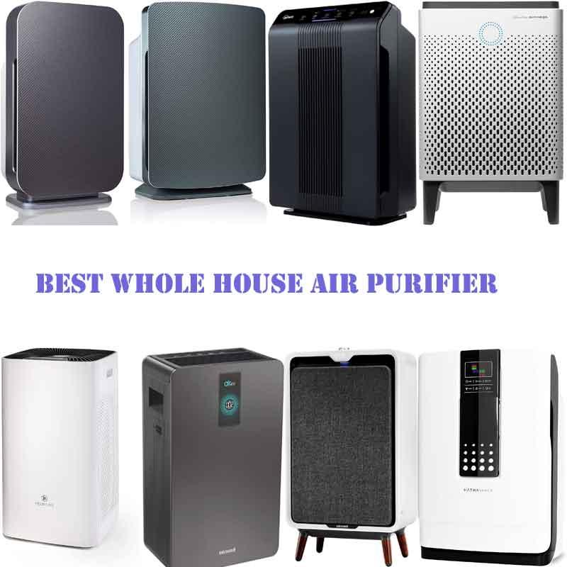 Best Whole House Air Purifier